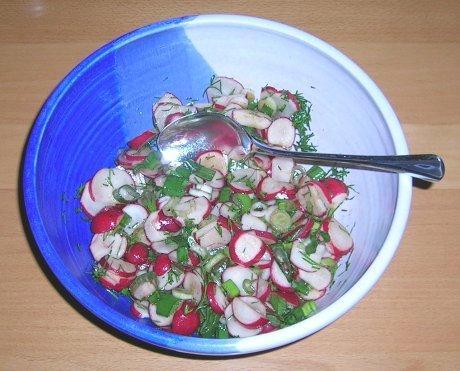 Radieschensalat aus der Ukraine