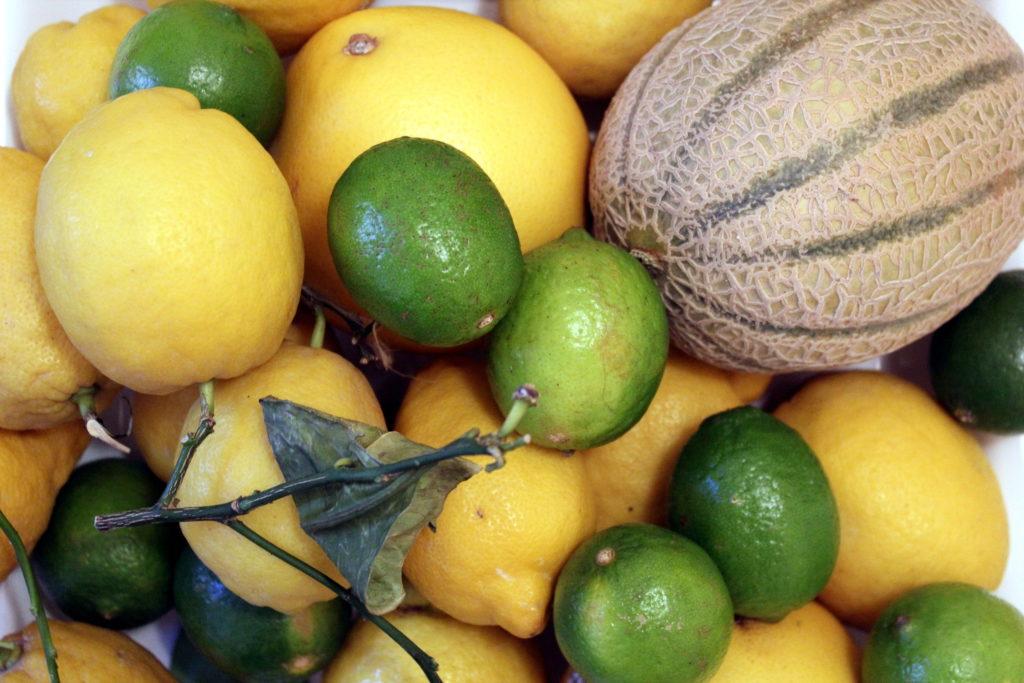 Zitronen, Limetten und eine Melone