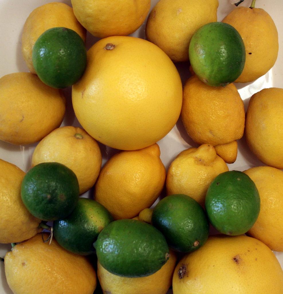 Zitronen und Limetten bilden einen Smile